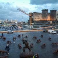 I lupi di Ruowang a Napoli, è la natura che si ribella all'uomo