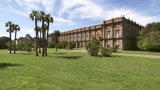 """Cultura, torna la """"Domenica al museo"""": ingressi gratuiti"""
