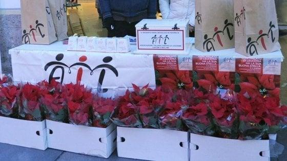 Stella Di Natale Ail 2021.A Napoli Le Stelle Di Natale Ail La Repubblica