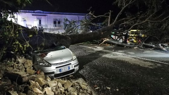 Maltempo: cade un albero su un'auto, danni per il forte vento allo stadio di Scampia