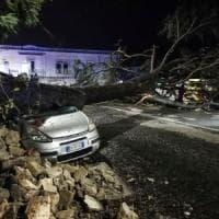 Maltempo: cade un albero su un'auto, danni per il forte vento allo stadio