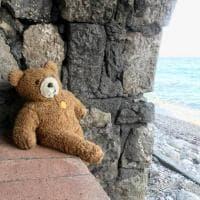 Capri, la storia virale dell'orsacchiotto dimenticato a Marina Grande