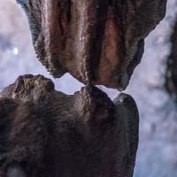 """Grotte di Pertosa, il """"bacio"""" tra stalattite e stalagmite dopo 20 mila anni"""