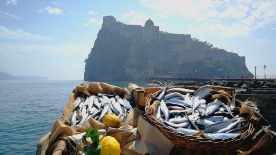 Blockchain, la tecnologia al servizio del mare: così la Campania traccerà il pescato