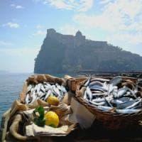 Blockchain, la tecnologia al servizio del mare: così la Campania traccerà