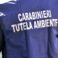 Impianto di rifiuti sequestrato nel Salernitano