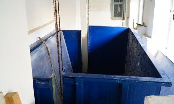 Stazione Dohrn, riapre l'Aquarium: ecco la prima nuova vasca