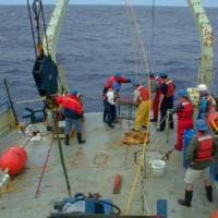 """Nel mare più caldo c'è meno plancton: così il clima """"pazzo"""" impoverisce"""