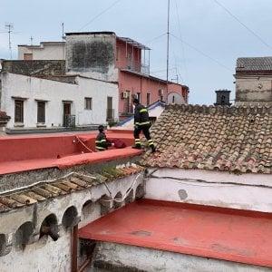 Il gatto Andrea sul tetto che scotta salvato dai vigili del fuoco