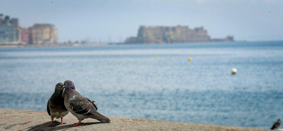 Napoli, la primavera nella città deserta per il Covid-19