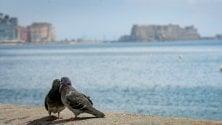 Napoli, la primavera nella città deserta