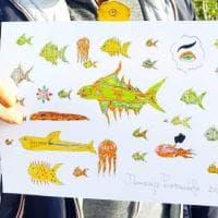 Ischia, tra pesci e dragoni: così i pazienti psichiatrici rompono l'isolamento con la fantasia