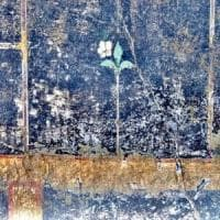 Nuova scoperta a Pompei: il mistero della piccola Mummia