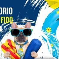 """In spiaggia con Fido"", a Forio arenili dog friendly"