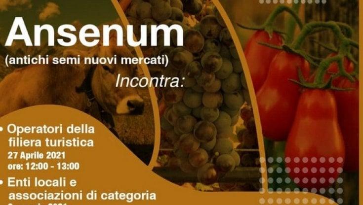 """Progetto """"Ansenum"""", due webinar sulla filiera agricola e lo sviluppo  sostenibile - la Repubblica"""
