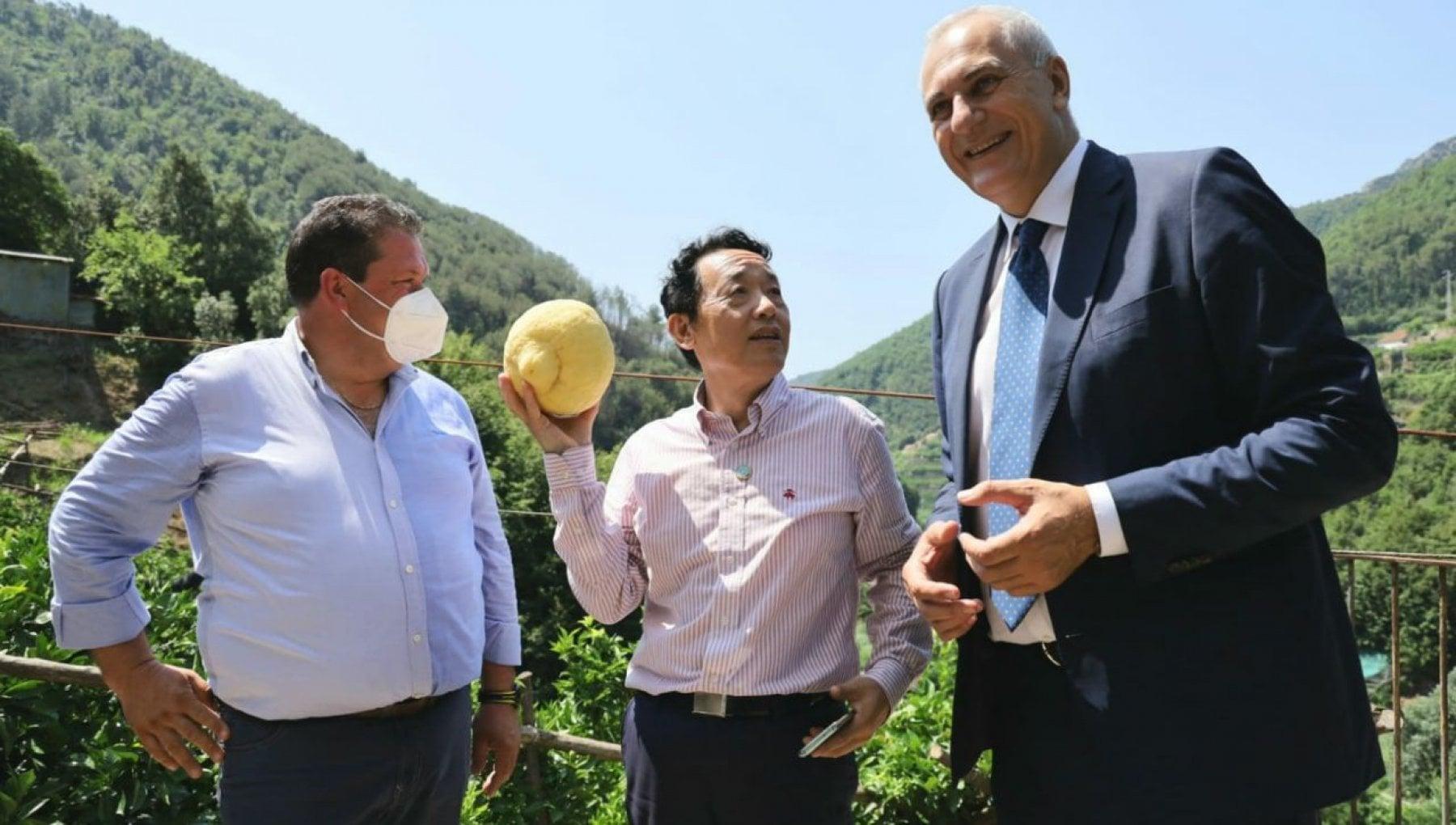 G20 a Napoli, il direttore generale della Fao in visita alle eccellenze  della produzione agricola campana - la Repubblica