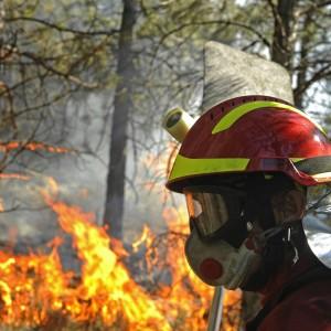 Incendi, i sindacati chiedono lo stato di emergenza al governatore