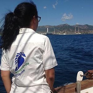 Bocciato il mare siciliano, sotto accusa il sistema di depurazione
