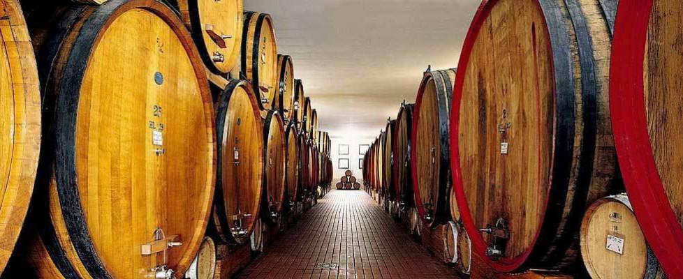 La Guida dell'Espresso, ecco i migliori vini di Sicilia