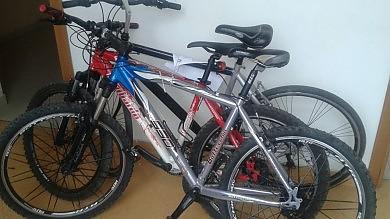 Due agenti si fingono fidanzati   Foto   presi due ricettatori di bici allo Zen