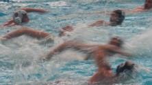Vince la Roma nuoto il Telimar deluso   resta terzo in classifica