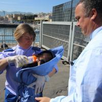 Emergenza sbarchi, il neonato allattato dalla volontaria al porto di Palermo