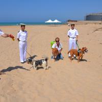A Porto Empedocle i cani hanno la loro spiaggia riservata