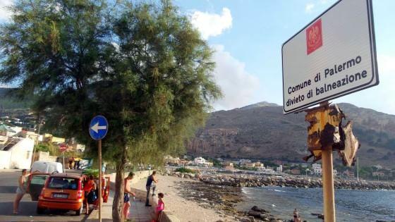"""Alga tossica a Sferracavallo: """"Vietato sostare vicino al mare"""""""