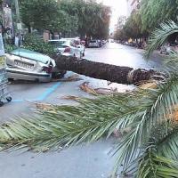 Nubifragio nella notte su Palermo, strade allagate