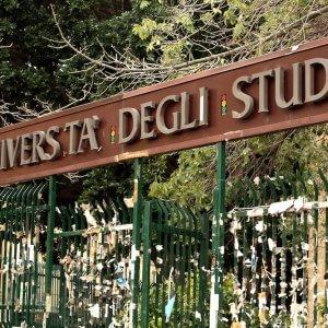 Università, workshop, cineforum e laboratori: le attività degli studenti