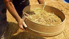 #amuriperlasicilia  su Fb il contest sul cibo