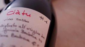 Ciàtu, il vino nato a Menfi per aiutare i bimbi autistici    di MANUELA LAIACONA