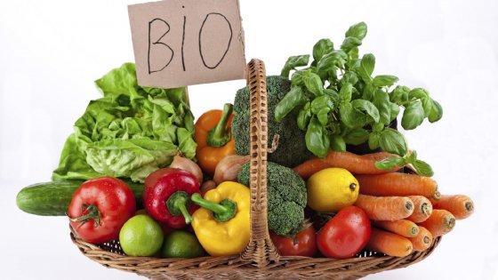 Stop ai contributi per l'agricoltura biologica in Sicilia, bufera sulla Regione