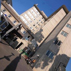 Palermo, l'ospedale Villa Sofia-Cervello attiva un numero verde per il virus Zika