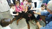 I cuccioli in corsia all'Ospedale dei bambini