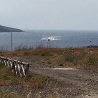 Pantelleria dopo le fiamme si pensa al futuro, petizione dei giovani