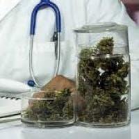 All'Asp di Ragusa arriva la cannabis terapeutica