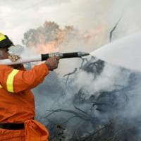 Catania: sull'Etna spenti i roghi, si contano i danni