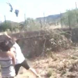 Siracusa, lanciano gattino in aria per divertimento e si filmano: tre minorenni finiscono dai carabinieri