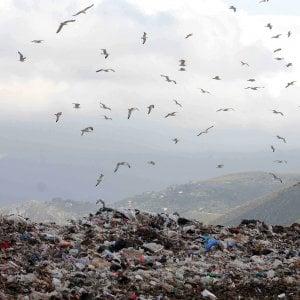 Pizzo,  appalti, lavoro: l'allarme dei pm sul sistema rifiuti in Sicilia