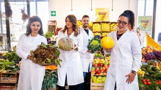 """Università: a Palermo un nuovo corso, ecco gli """"ingegneri del cibo di qualità"""""""