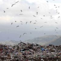 Emergenza rifiuti, pronto il maxi-bando per inviarli dalla Sicilia all'estero
