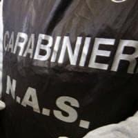 Controlli sulla carne dei punti vendita Giaconia, a Palermo si diffonde la bufala del carbonchio