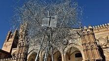 L'Albero della Pace  fa tappa alla Cattedrale