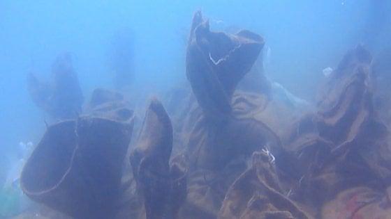"Quel tesoro sommerso al largo di Gela: ""Salviamo la flotta greca dai tombaroli del mare"""