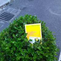 Palermo: 150 libri come semi negli angoli della città