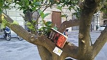 """Palermo: 150 libri  """"seminati"""" nelle strade"""