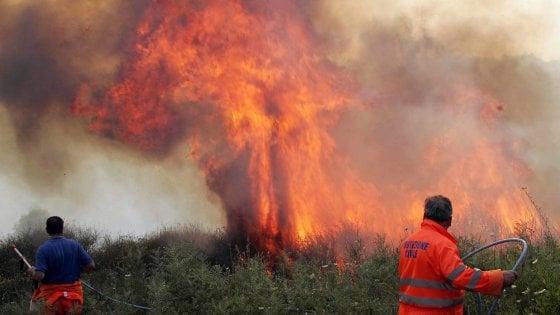 """Sicilia impreparata contro gli incendi, i sindacati: """"La Regione non ha programmato nulla"""""""