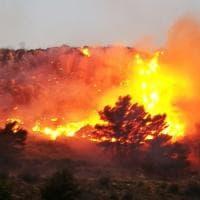 Erice, le fiamme divorano la montagna