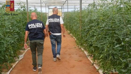 Caporalato, arresti nel Sud per sfruttamento di migranti